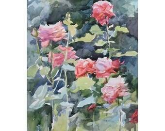 Tender roses. Original watercolor painting.