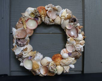 "Seashell wreath - 13"" shell wreath - orange wreath - coastal decor - beach wreath"