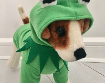 Dog frog costume by FiercePetFashion
