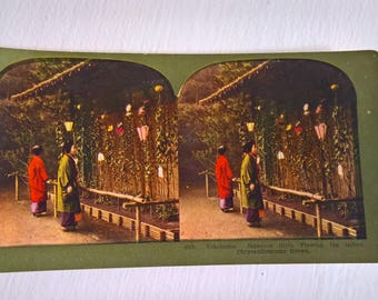 Chrysanthemum Garden Yokohama Antique Stereopticon Stereoscope Stereo Viewer Slide Card --- Vintage Japanese Culture Asia History Photograph