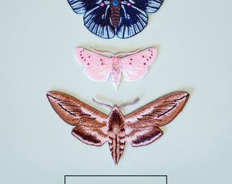 Special package of three Butterfly Ties   No. 2, No. 3 & No. 4 (SOLD OUT)