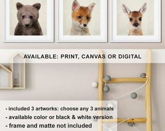 Forest Animal prints for nursery, Baby bear Fox Fawn deer nursery art, Woodland baby animal pictures, Woodland animals Print/Canvas/Digital