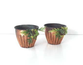 Set of Two Copper Cup With Faux Succulents, Twin Copper Cups With Fake Succulents. tabletop artificial succulents