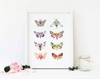 Butterfly Illustrated Watercolour Wall Art | 8x10 Botanical Vector Print | Home Decor Print | Framed Floral Poster | Available with Frame