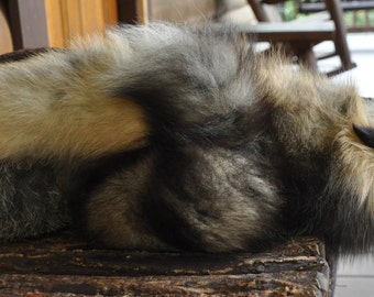 "REAL ""Sleeping fox"" cross fox pillow - has face & tail."