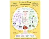 French Ring Tree page size