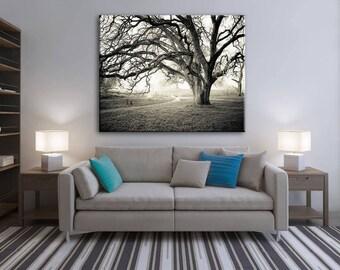 Black and white photography, Canvas wall art, Landscape Print, Tree wall art, Home Decor, Oak tree // Misty Morning Black & White