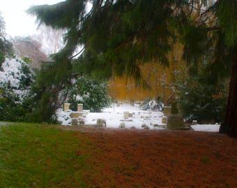 Colour print - Snow print - Graveyard - Winter photography - Winter print - Snow decor - Snow photography - Snow art - Landscape print - Art