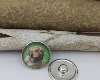 Snap Button Photo Picture Custom Snap Fits 18-20mm Snap Button Gingersnaps Noosa Magnolia Vine Gracie V Jewelry