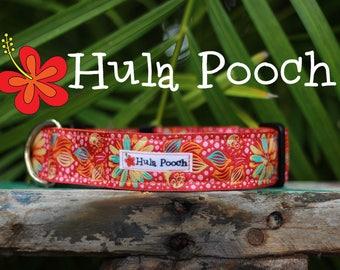 """Dog Collar """"Kailua Sunrise"""" Orange Hot Pink - Medium, Large, Wide, Adjustable // FREE SHIPPING"""