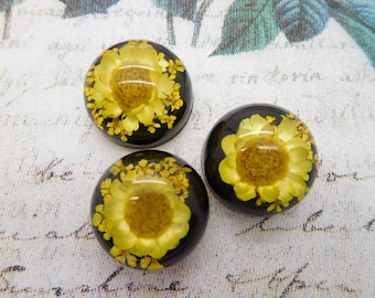 1 cabochon resin with dried flower Daisy yellow 20 mm