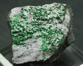 Uvarovite Garnet crystals on Matrix, Russia, Mineral Specimen for Sale