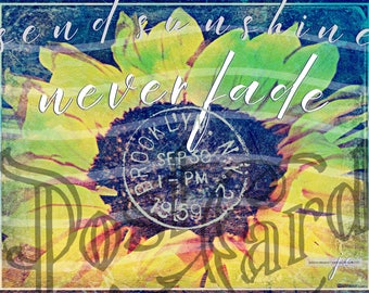 Send Sunshine, Good Quotes, Canvas, Inspirational Quotes, Prints, Quotes, Sunflower Decor, Art, Words of Encouragement, Giclee, Inspiration