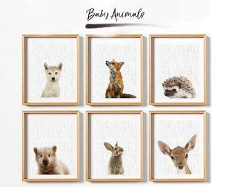 70%OFF set of 6 baby animals, printable baby animals, nursery poster, nursery print, animals poster, animals print, animals printable, nurse