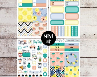Sweet Summer Mini Happy Planner Sticker Kit