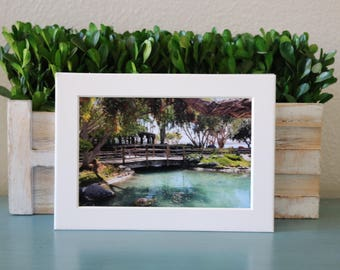 Pond by the Sea 4x6 print of Seaport Village Pond, wall art, san diego, california, home and living, turtle