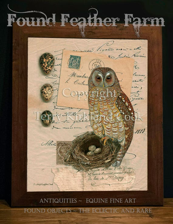 """The Owl Nest and Eggs ~ Original Vintage Art Collage 20"""" x 24"""" Framed Giclee Print"""