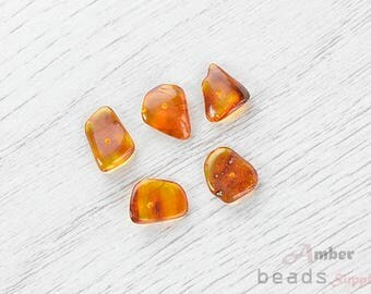 2498/3 // Baltic Amber Beads, 5 pc