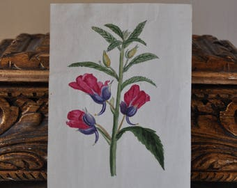 Miniature Antique French Watercolor Flower Botanical Painting, Small Vintage Watercolor Floral Bouquet, Small Country Flower Art, French Art