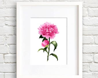 Peony Flower - Peonies Art Print - Flower Wall Decor - Floral Watercolor Painting