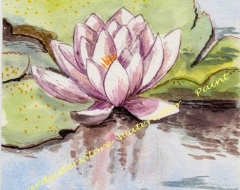 Water Lily - Watercolor Painting