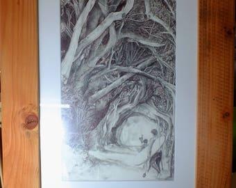 pen and pencil drawing/ illustration original drawing - macrocarpa missions