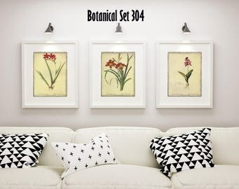 Set of 3 Botanical Prints - Red Floral Prints - Set of 3 Framed Prints - Housewarming Gift - Bedroom Decor - Modern Farmhouse Wall Art