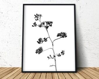 Plant Leaf Art Print, Plant Wall Print, Plant Print, Wall Art, Botanical Poster, Herb Poster, Herb Print, Herb Wall Art, Kitchen Decor