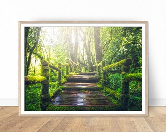 Jungle Print, Jungle Path Photography, Nature Photography, Tropical Poster, Digital Download, Nature Prints, Landscape, Home Decor, Wall Art