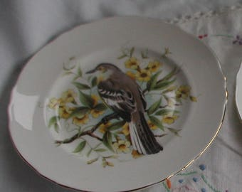 Vintage Crown Staffordshire Collectors Bird Plates x 2
