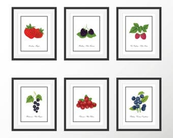 Botanical Print Set Fruit Berry Plant Garden Print Kitchen Print Kitchen Art Blueberry Strawberry Currant Raspberry Blackberry Vintage Print