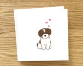 Brown and white Havanese puppy with love