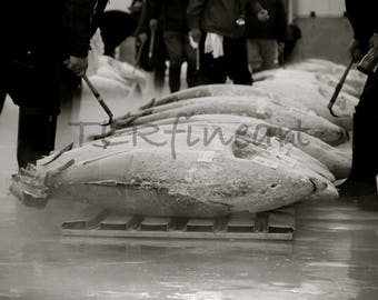 Tokyo fish market, Japan, Tuna, Fish auction, ice cold fish, black and white photo
