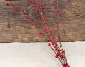 """16"""" Pip Berry Stems in a Rich Red - Package of 10 Stems"""