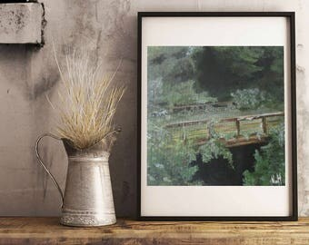 Overgrown rail bridge - Giclée print