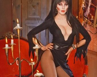 FREE SHIPPING  Elvira Mistress of the Dark celebrity photo 11x17