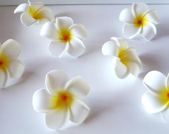 Artificial Hawaiian flowers