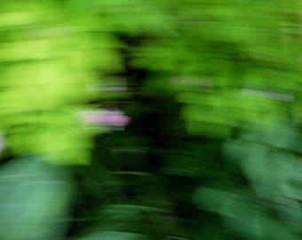 Abstract photography. Green foliage. Abstract art. Abstract decoration.