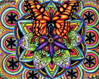 TRANSFORMING BUTTERFLY Colored Pencil Art Framed Print/Greeting Card/Magnet