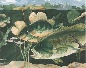 Green Giant Fishes Wallpaper Border 226 CTC
