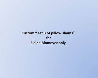 "Custom "" set 3 of pillow shams""  for Elaine Blomeyer only"