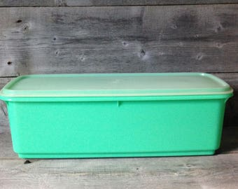Vintage Tupperware 3 piece veggie crisper | Jadeite Green Celery Keeper