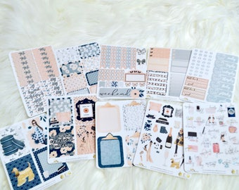 VOL 5 | WEEKLY KIT | Full Box Stickers | Planner Kit |  Planner Stickers | Functional Stickers | Decorative Stickers