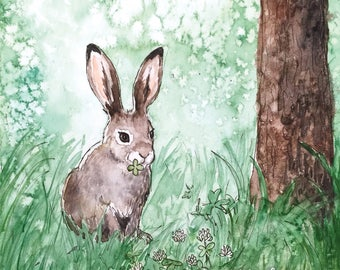 The Mountain hare postcard
