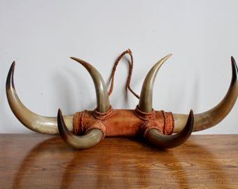 Steer horn etsy pair of western mounted bull horns southwest long horns steer horns big game sciox Choice Image
