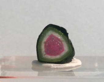 7.3 ct watermelon tourmaline slice from Kunar,Afghanistan y