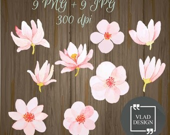 9 Pink Flowers Elements, Spring Clipart Digital Spring Elements, Cute flowers graphics, Watercolor clipart, Floral clipart, Magnolia images