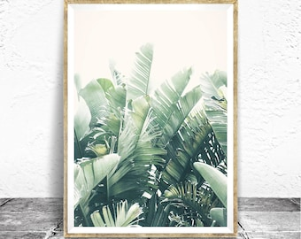 Tropical Print - Baydreem. Tropical Wall Art Tropical Poster Banana Leaf Photography Tropical Decor Soft Palette Minimalist Botanical Print