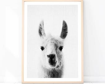 Llama Print, Llama Peekaboo, Alpaca Peekaboo, Modern Nursery Decor, Kids Room Decor Ideas, Llama Wall Art, Minimalist Art, Best Selling Item
