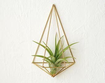 Air plant wall holder Himmeli Polyhedron No02 air plant included | wall sconce  | brass planter | wall deco | air plant container |